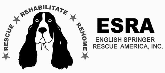 ESRA_WP_logo_BWrec