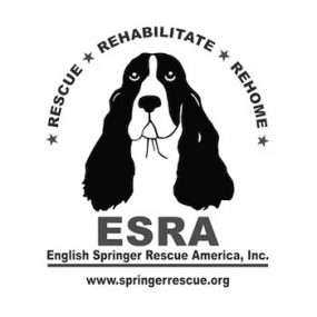 About ESRA