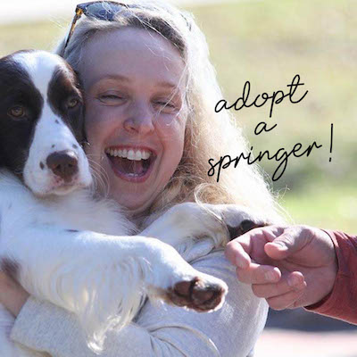 Adopter and springer in her arms