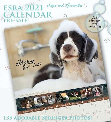 presale of ESRA calendar